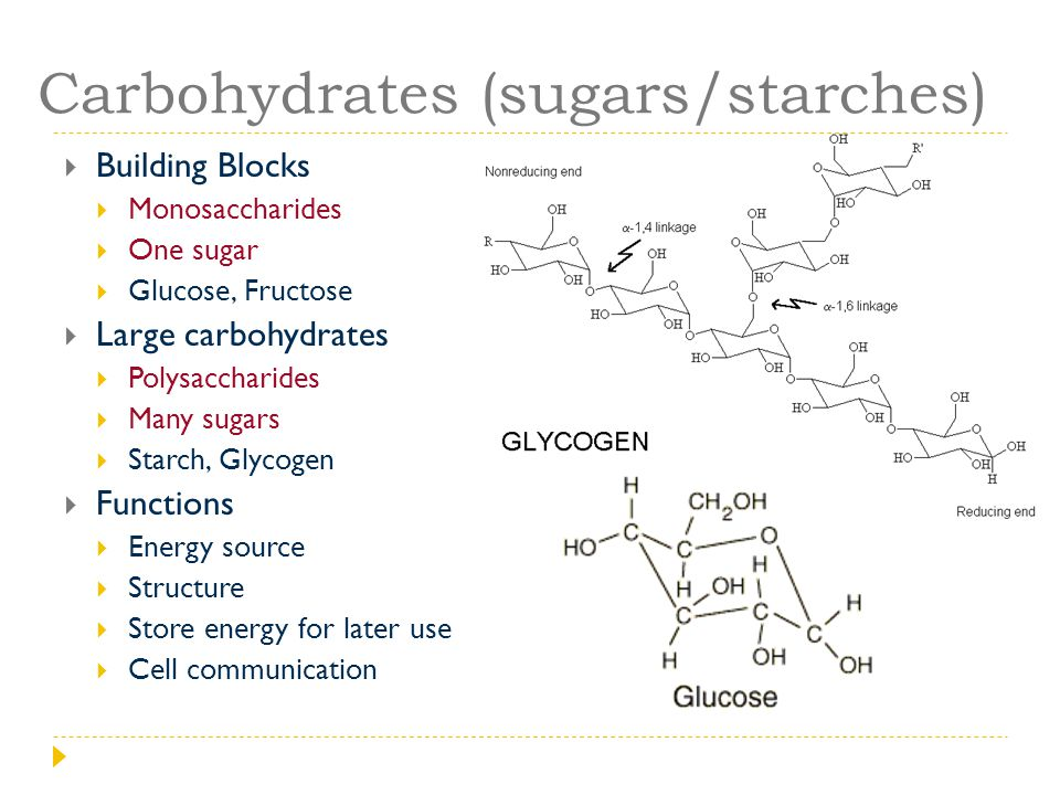 Carbohydrates (sugars/starches)