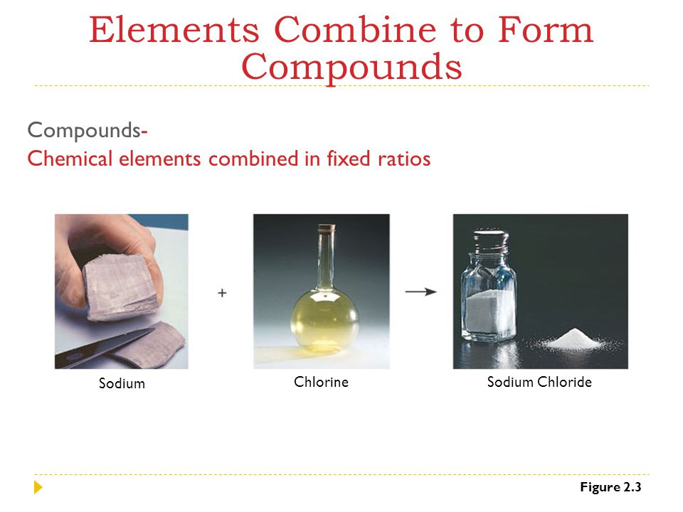 Elements Combine to Form Compounds