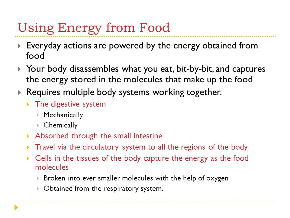 Using Energy from Food Everyday actions are powered by the energy obtained from food.