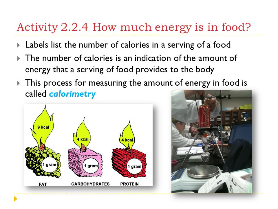 Activity 2.2.4 How much energy is in food