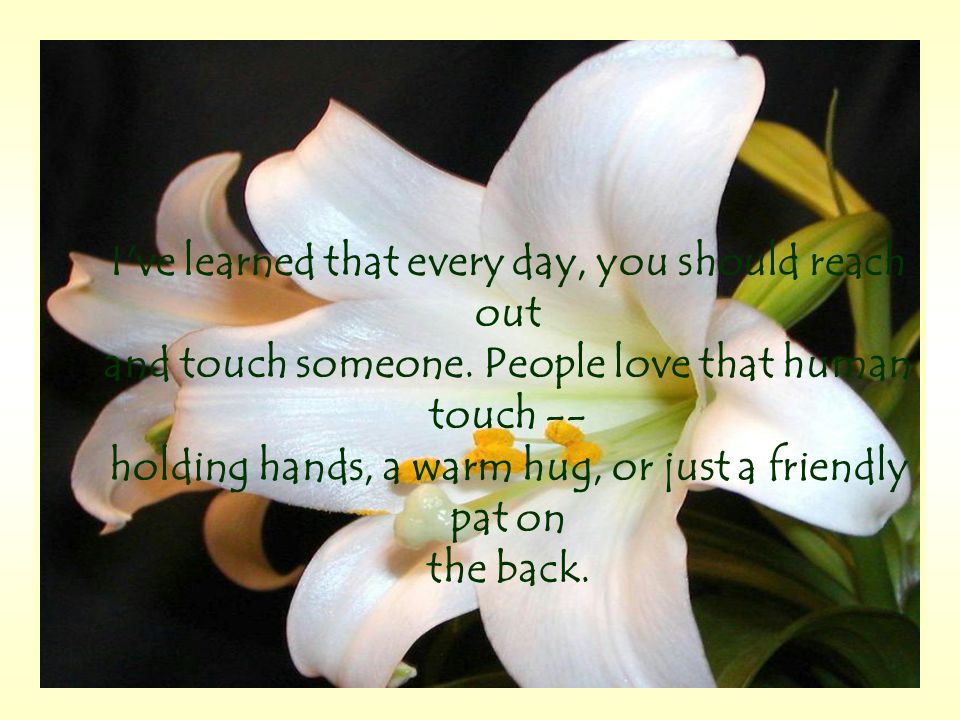 I ve learned that every day, you should reach out and touch someone