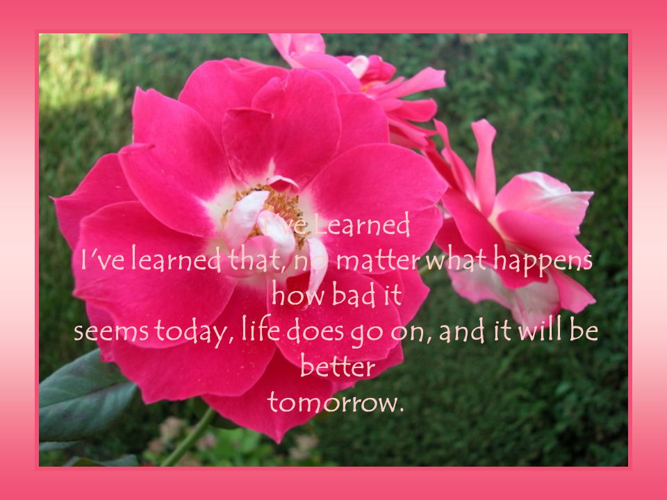 I ve Learned I ve learned that, no matter what happens how bad it seems today, life does go on, and it will be better tomorrow.