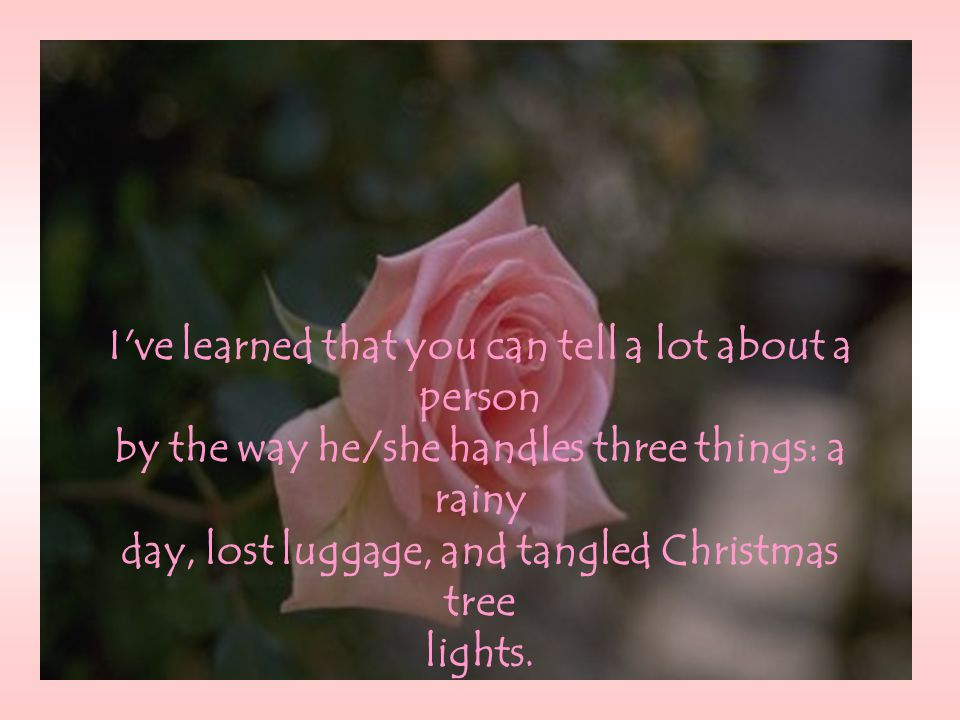I ve learned that you can tell a lot about a person by the way he/she handles three things: a rainy day, lost luggage, and tangled Christmas tree lights.