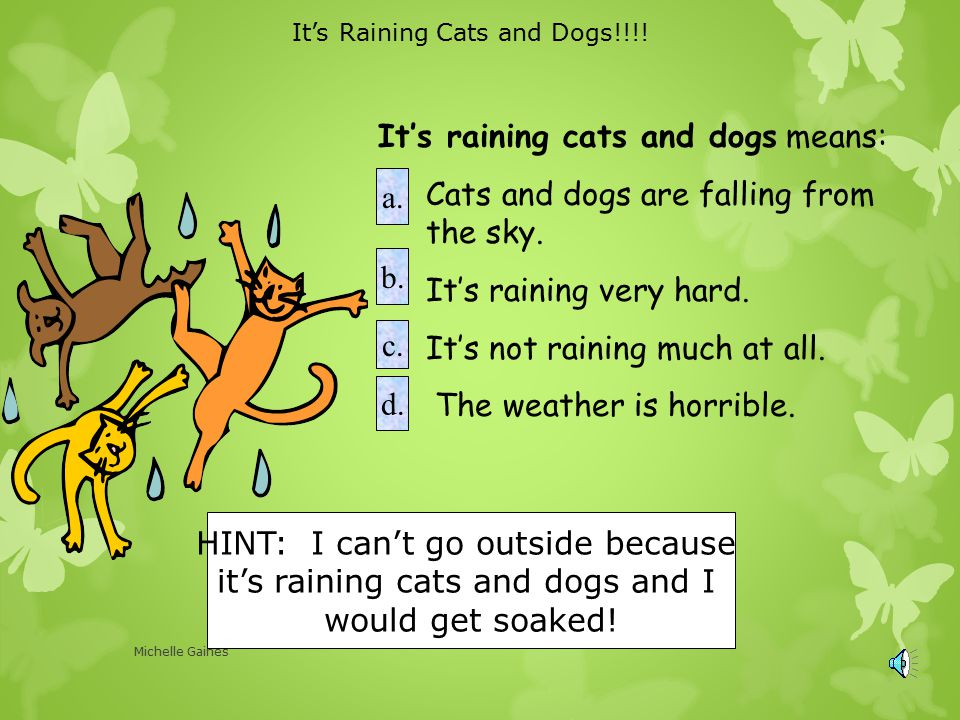 It's raining cats and dogs means: