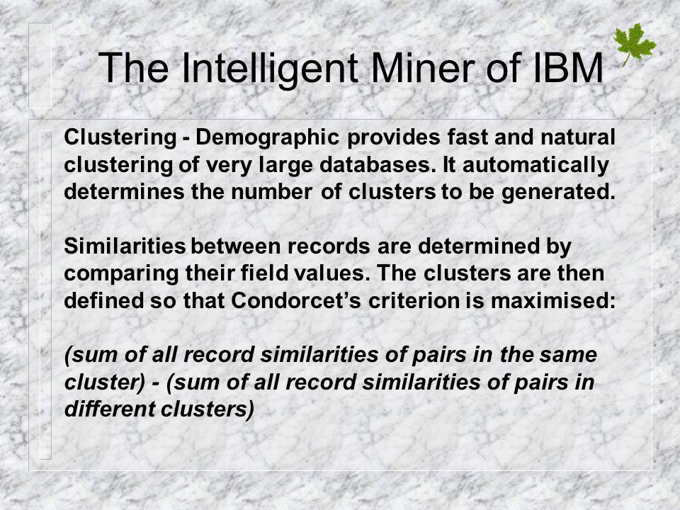 The Intelligent Miner of IBM