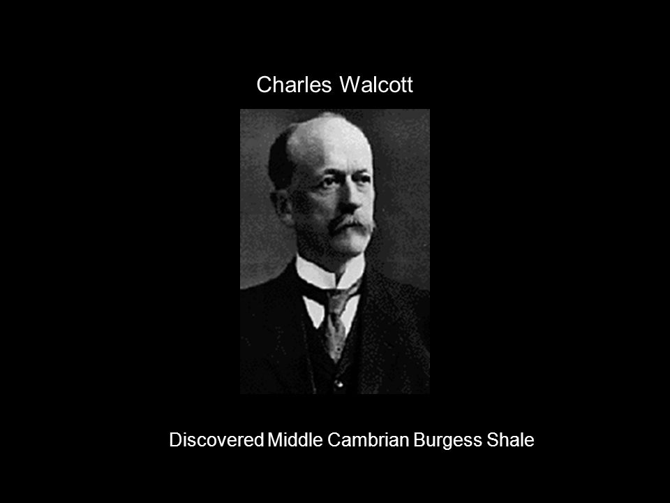 Charles Walcott Discovered Middle Cambrian Burgess Shale