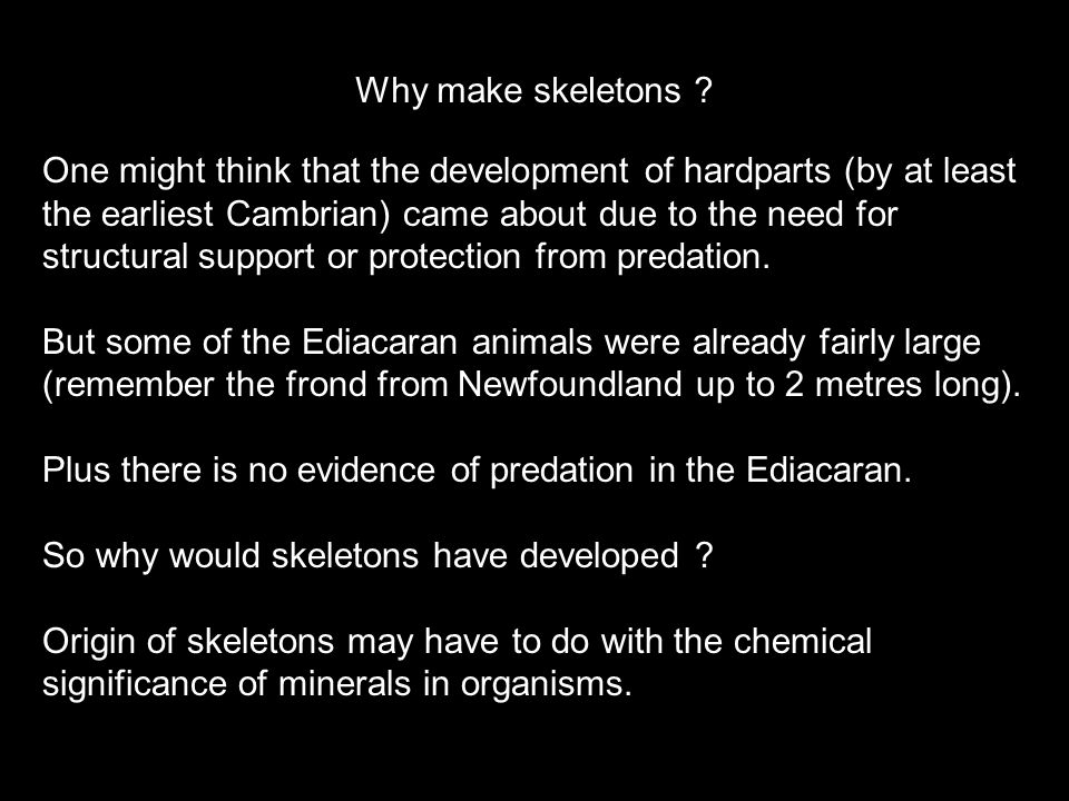 Why make skeletons