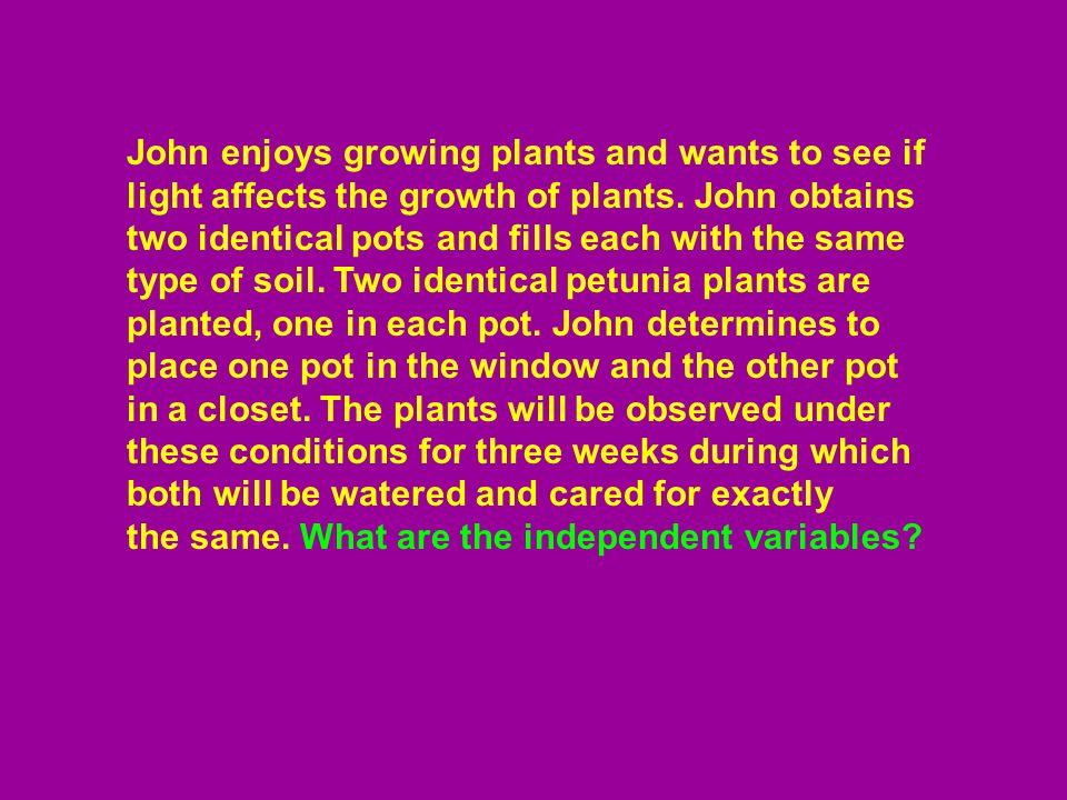 John enjoys growing plants and wants to see if light affects the growth of plants. John obtains two identical pots and fills each with the same type of soil. Two identical petunia plants are planted, one in each pot. John determines to place one pot in the window and the other pot in a closet. The plants will be observed under these conditions for three weeks during which