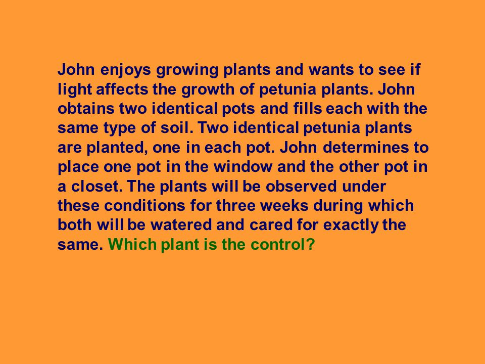 John enjoys growing plants and wants to see if light affects the growth of petunia plants.