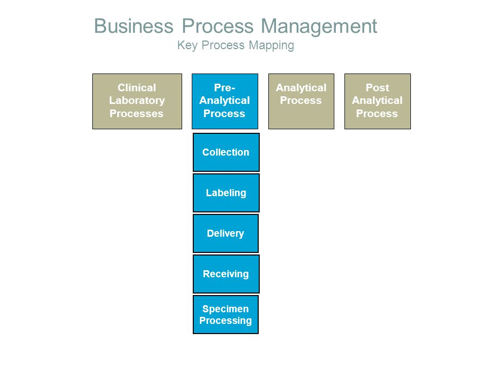 Business Process Management Key Process Mapping