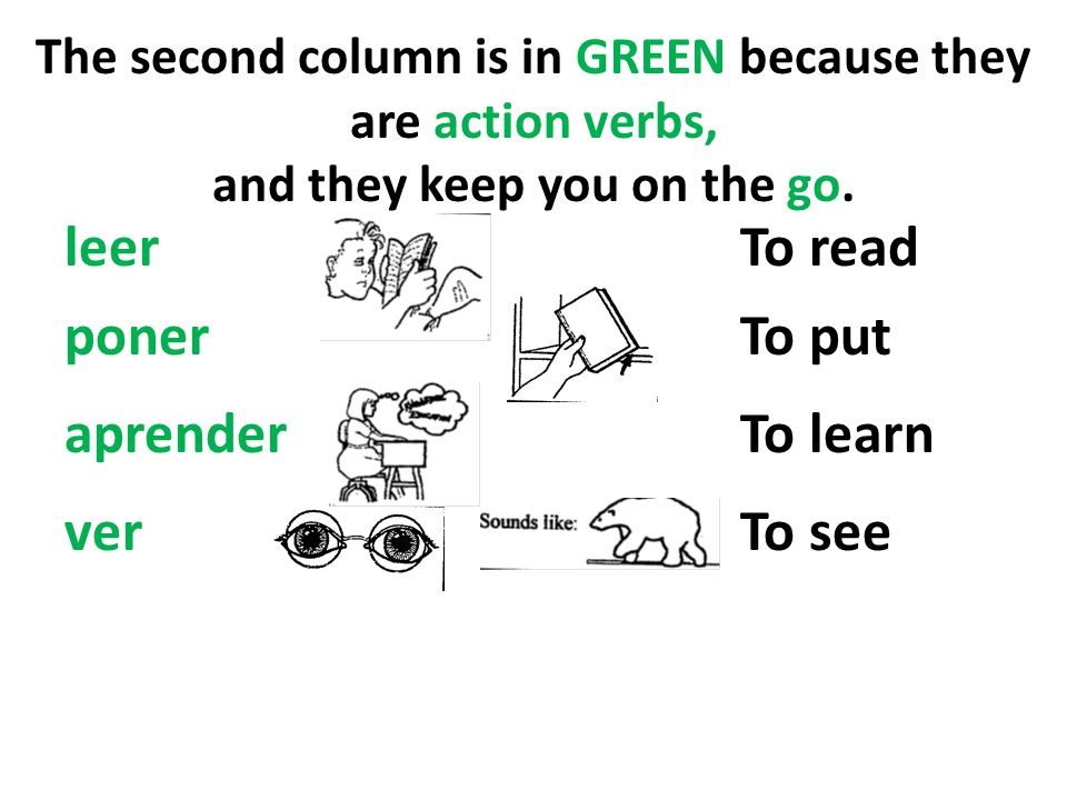 leer To read poner To put aprender To learn ver To see