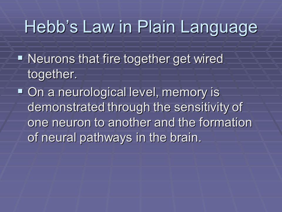 Hebb's Law in Plain Language