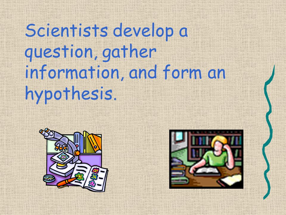 Scientists develop a question, gather information, and form an hypothesis.