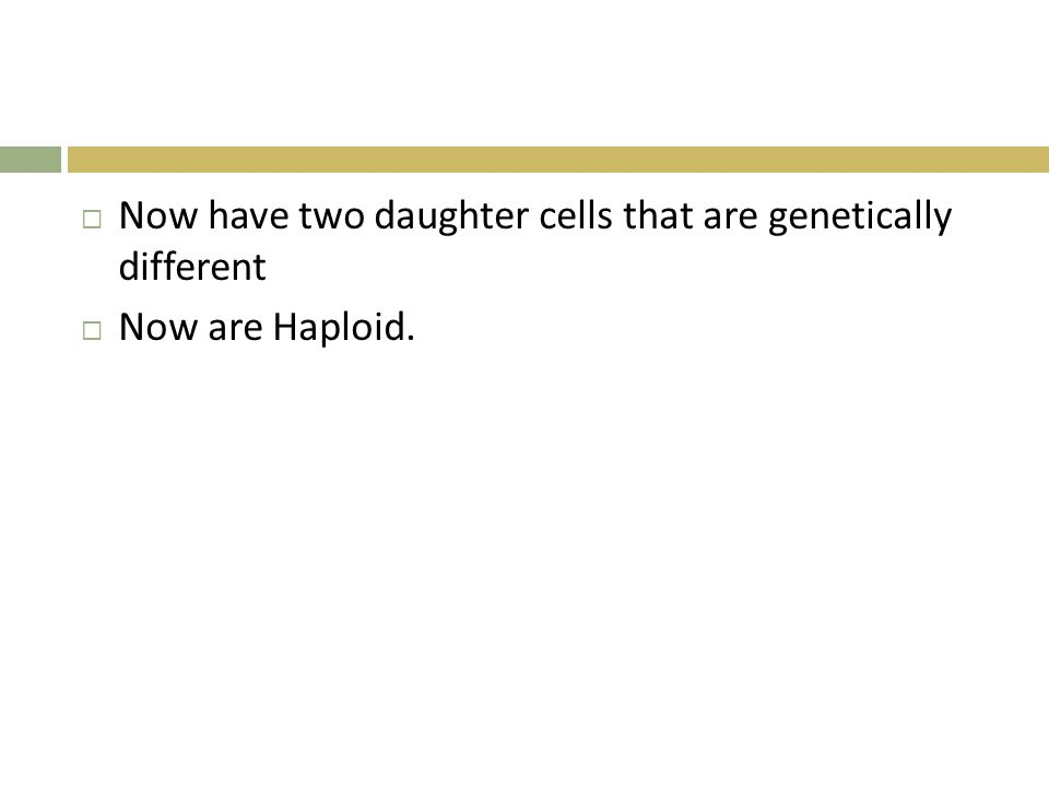 Now have two daughter cells that are genetically different