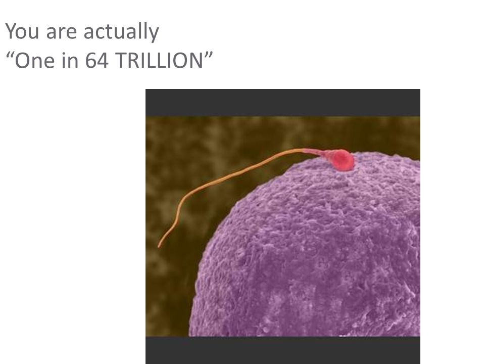 You are actually One in 64 TRILLION
