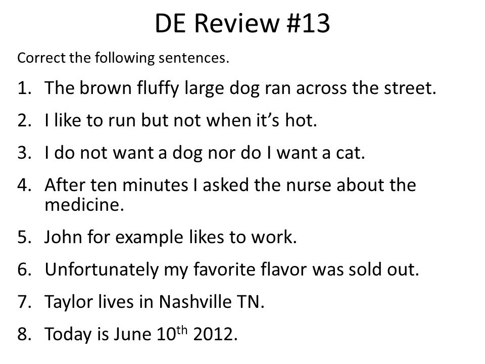 DE Review #13 The brown fluffy large dog ran across the street.