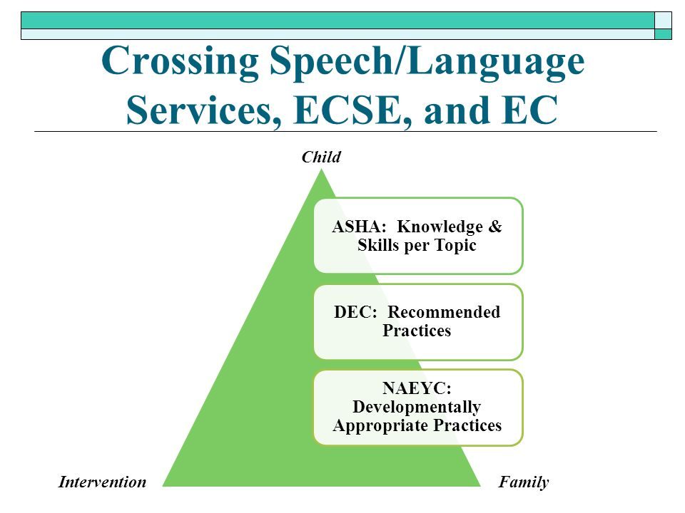 Crossing Speech/Language Services, ECSE, and EC