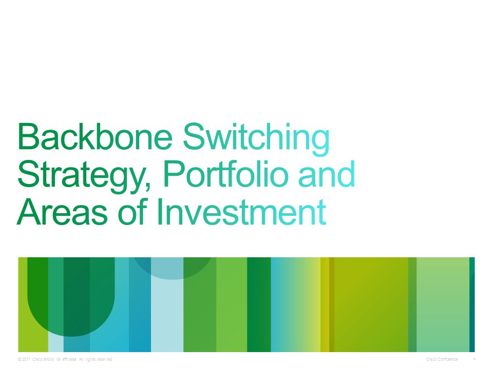 Backbone Switching Strategy, Portfolio and Areas of Investment