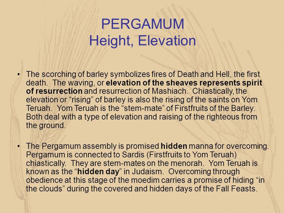 PERGAMUM Height, Elevation