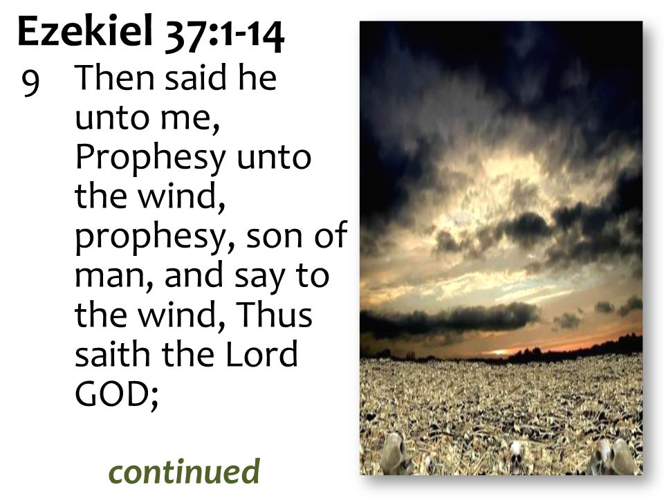 Ezekiel 37:1-14 Then said he unto me, Prophesy unto the wind, prophesy, son of man, and say to the wind, Thus saith the Lord GOD;
