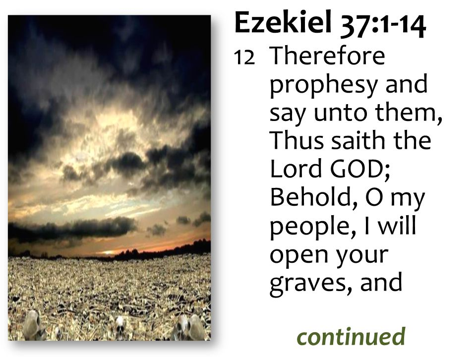 Ezekiel 37:1-14 Therefore prophesy and say unto them, Thus saith the Lord GOD; Behold, O my people, I will open your graves, and.