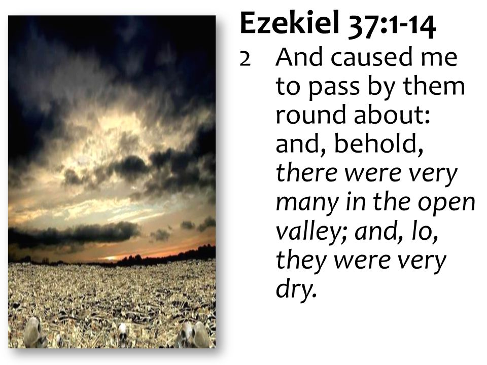 Ezekiel 37:1-14 2 And caused me to pass by them round about: and, behold, there were very many in the open valley; and, lo, they were very dry.