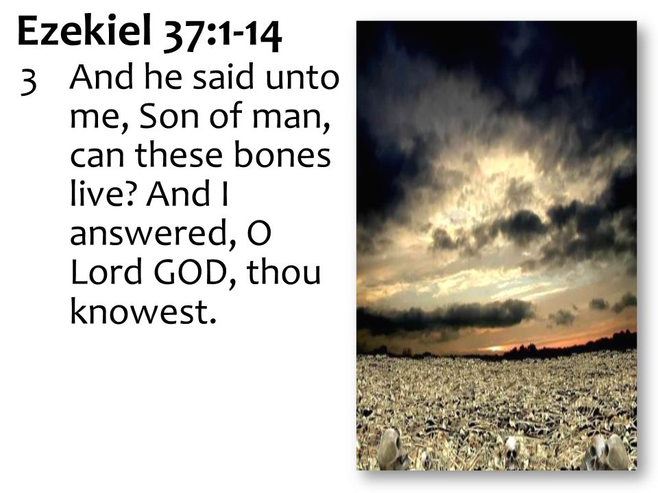 Ezekiel 37:1-14 3 And he said unto me, Son of man, can these bones live.