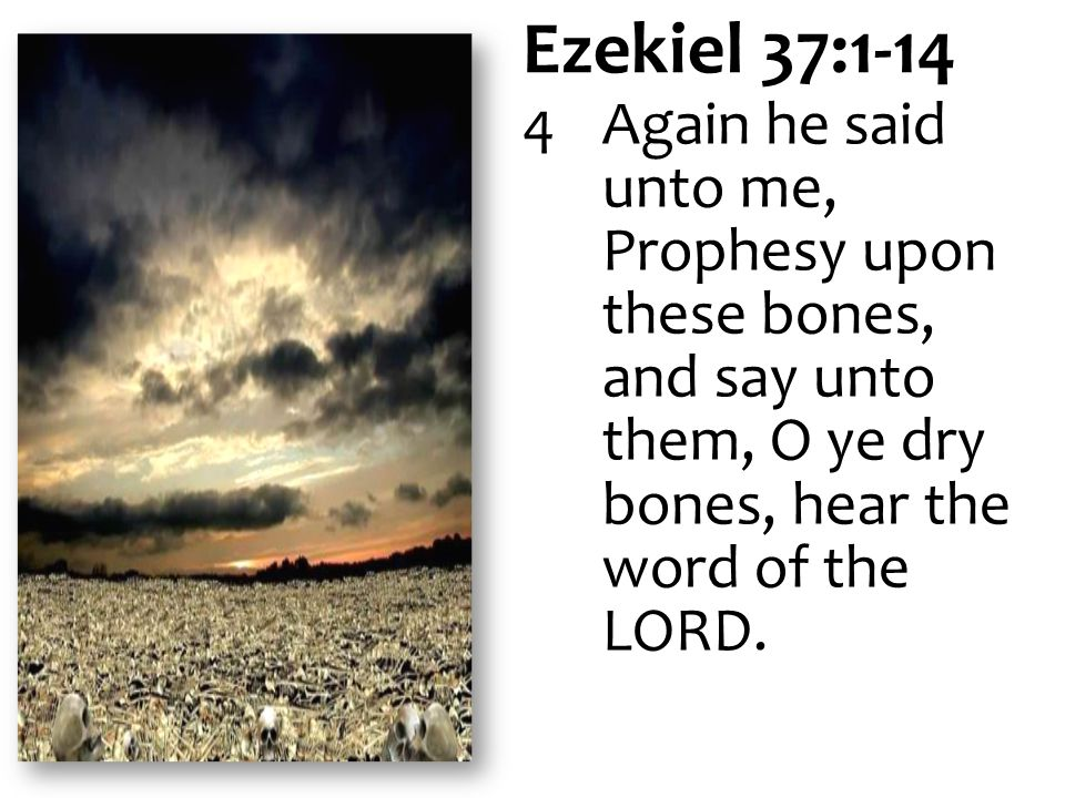 Ezekiel 37:1-14 4 Again he said unto me, Prophesy upon these bones, and say unto them, O ye dry bones, hear the word of the LORD.