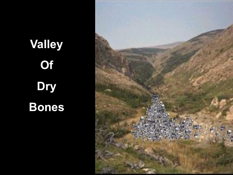 Valley Of Dry Bones 3 1. God commands Ezekiel to prophesy to the wind