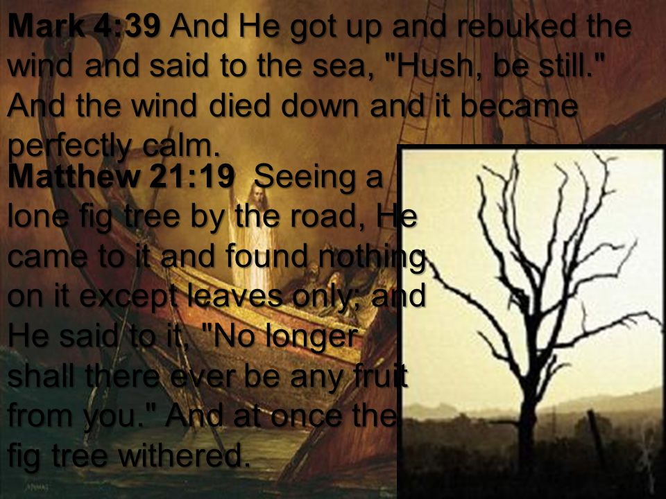 Mark 4:39 And He got up and rebuked the wind and said to the sea, Hush, be still. And the wind died down and it became perfectly calm.