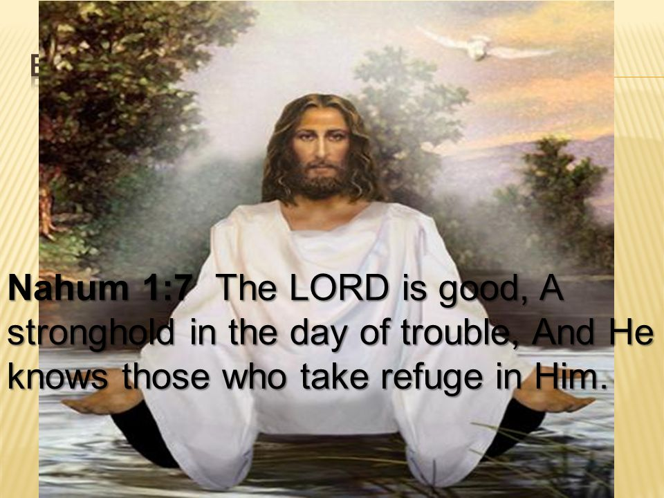 Bible survey - nahum Nahum 1:7 The LORD is good, A stronghold in the day of trouble, And He knows those who take refuge in Him.