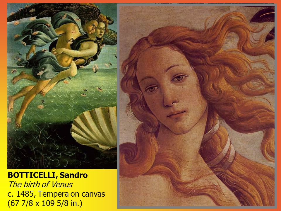 In the second half of the fifteenth century, much of the solidity of form favored in the figurative style of earlier Renaissance painters had given way to a preference for a more linear style. Figures in painted compositions gave an illusion of depth more like relief sculpture than that of solid figures in the round. This can be observed in the work of Botticelli. A sense of movement is conveyed by Botticelli s mythological figures in his Birth of Venus (c. 1480) (Jones, p.126). According to Classical myth, Venus was born when the severed genitals of Uranus were cast into the sea. Botticelli s Venus floats ashore on a scallop shell, gently blown by a male wind god and a female breeze. On the right, a woman, perhaps a personification of spring, rushes to cover Venus with a pink floral cloak. As a goddess of love and fertility Venus is appropriately surrounded by flowers (Adams, p.260). Modeling in lights and darks is de-emphasized and the figures forms are defined more through contour line (Jones, p.126). Botticelli s Venus is somewhat elongated, elegant, even languid -- as if just waking up. Her flowing hair, echoing the elegant drapery curves and translucent waves, conveys a linear quality characteristic of Botticelli s distinctive style (Adams, p.260).
