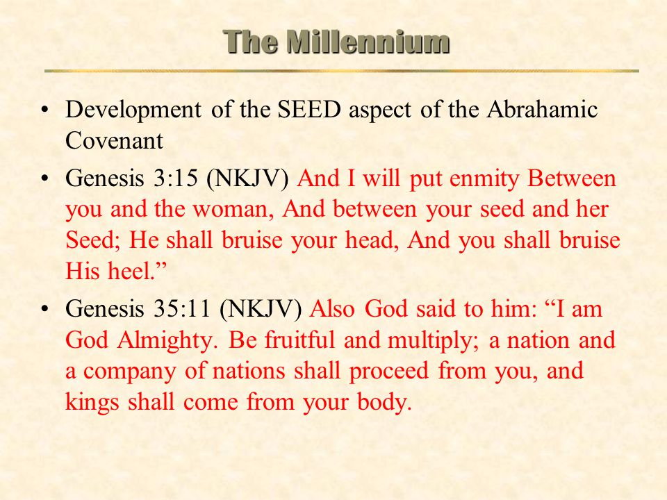 The Millennium Development of the SEED aspect of the Abrahamic Covenant.