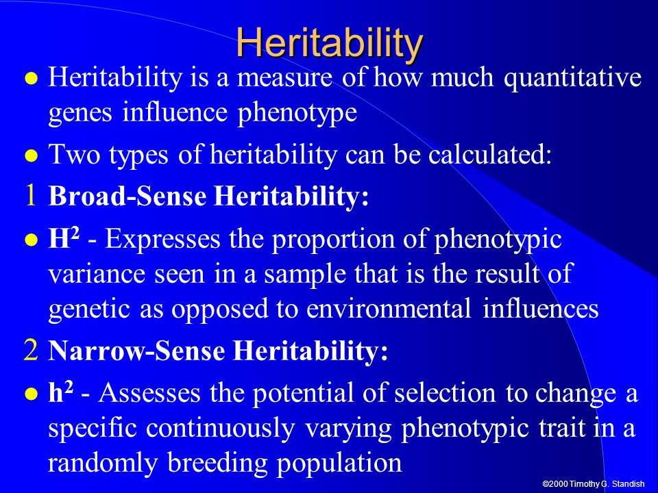 Heritability Heritability is a measure of how much quantitative genes influence phenotype. Two types of heritability can be calculated: