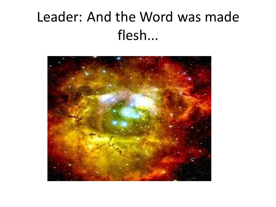 Leader: And the Word was made flesh...
