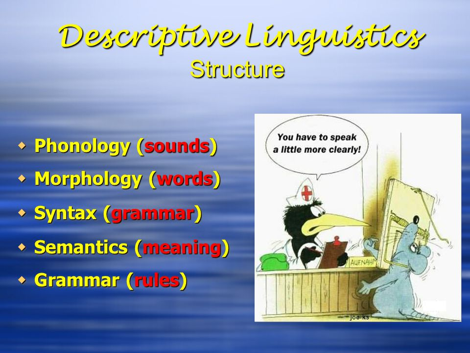 Descriptive Linguistics Structure