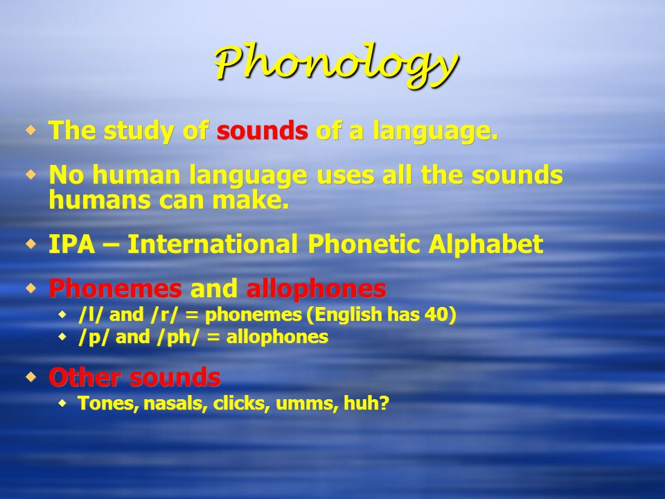 Phonology The study of sounds of a language.