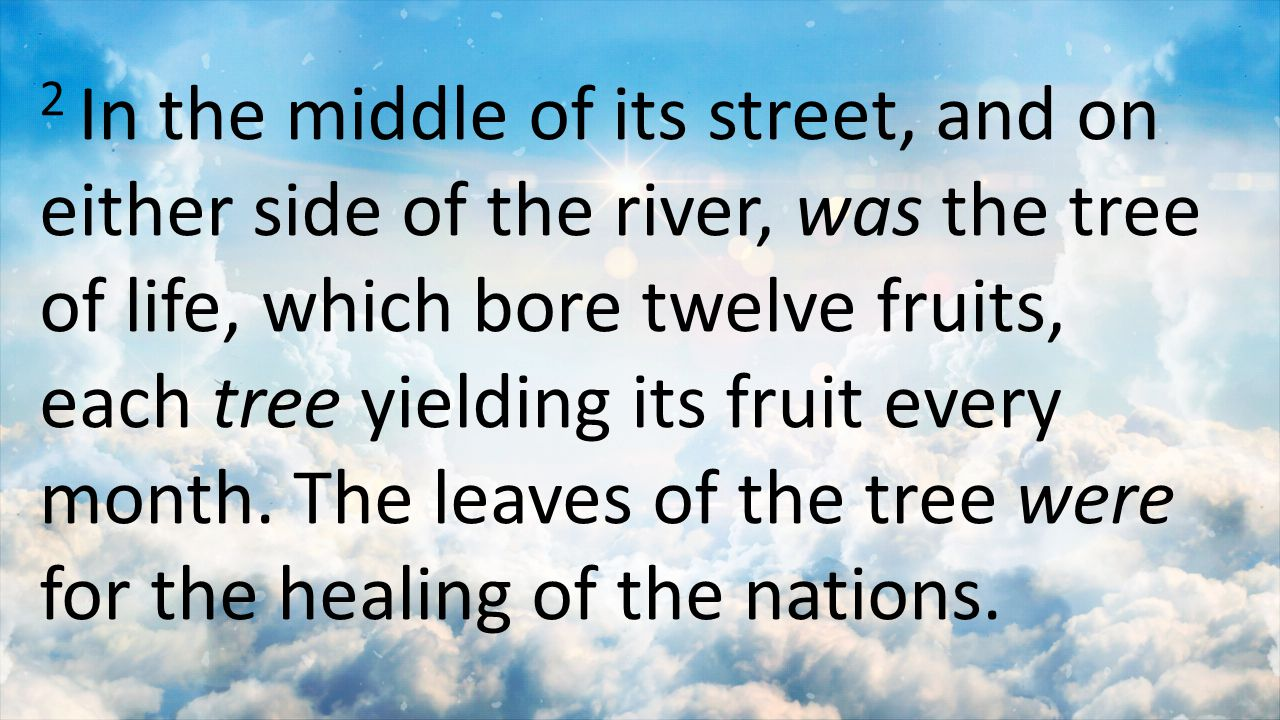 2 In the middle of its street, and on either side of the river, was the tree of life, which bore twelve fruits, each tree yielding its fruit every month.