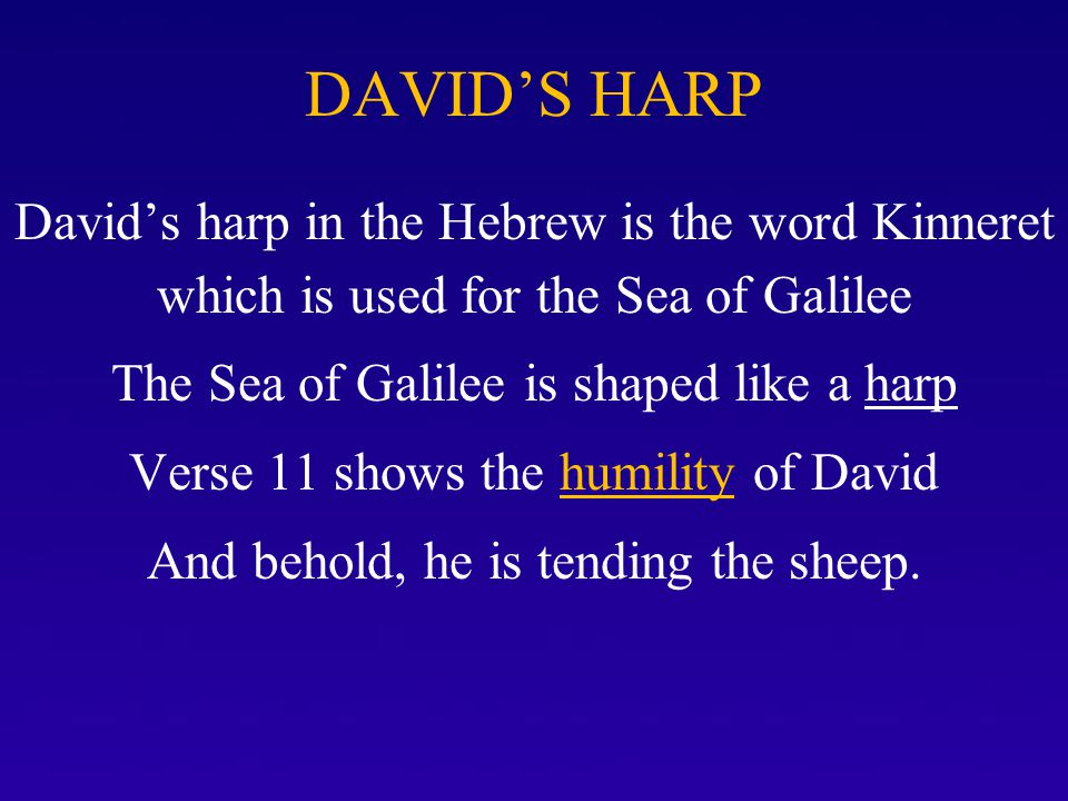 DAVID'S HARP David's harp in the Hebrew is the word Kinneret which is used for the Sea of Galilee.