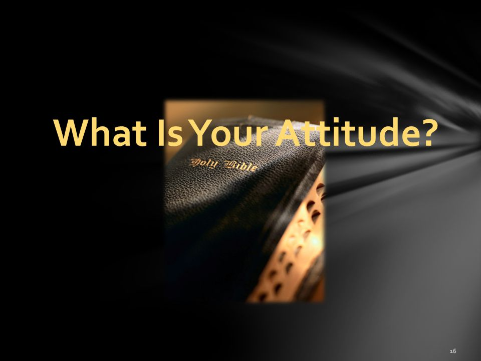 What Is Your Attitude