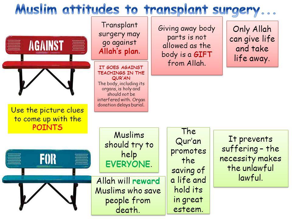 Muslim attitudes to transplant surgery...