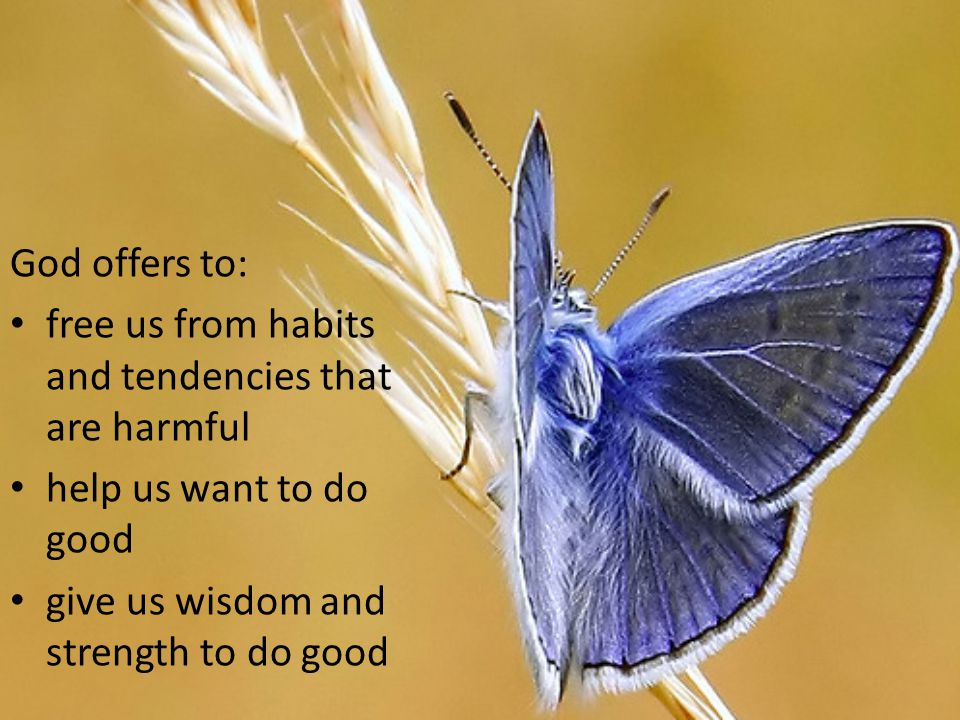 God offers to: free us from habits and tendencies that are harmful.