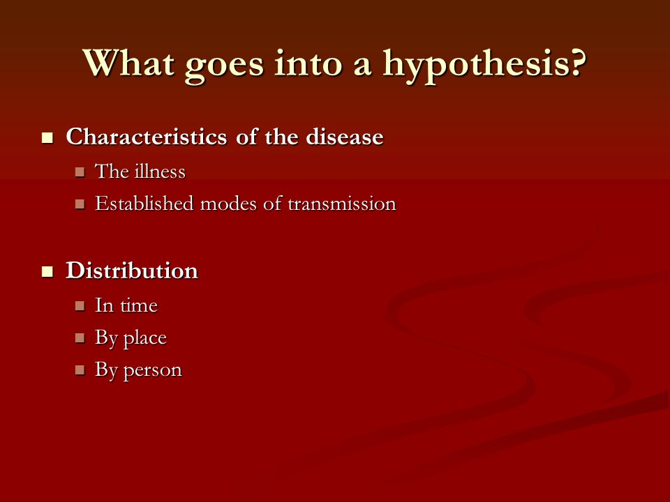 What goes into a hypothesis
