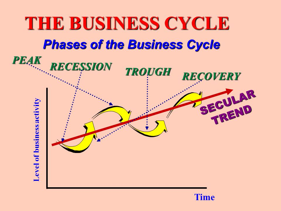 THE BUSINESS CYCLE Phases of the Business Cycle PEAK RECESSION TROUGH