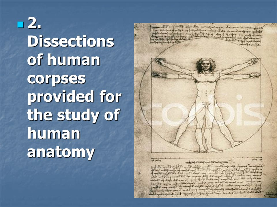 2. Dissections of human corpses provided for the study of human anatomy