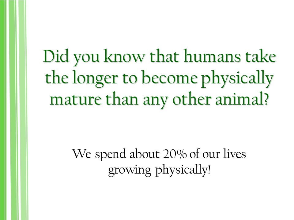 We spend about 20% of our lives growing physically!