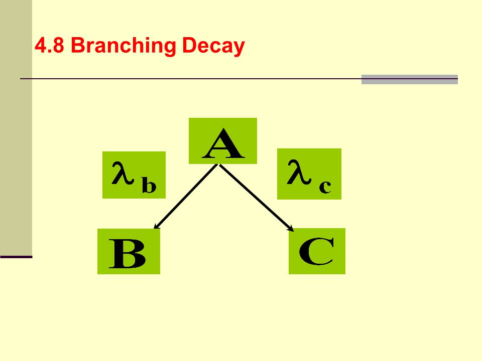 4.8 Branching Decay