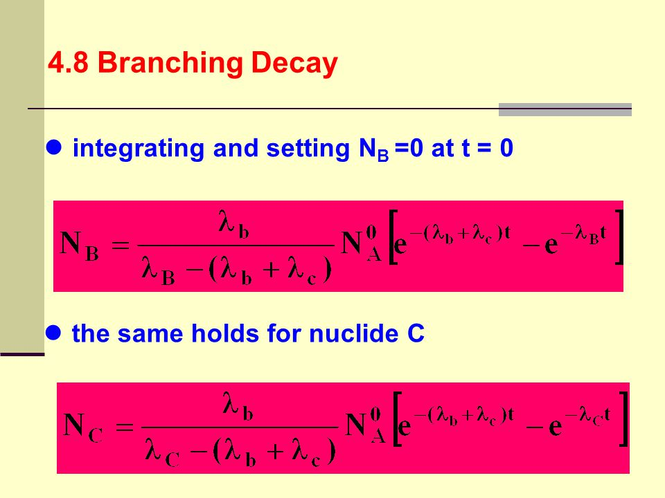 4.8 Branching Decay integrating and setting NB =0 at t = 0 the same holds for nuclide C