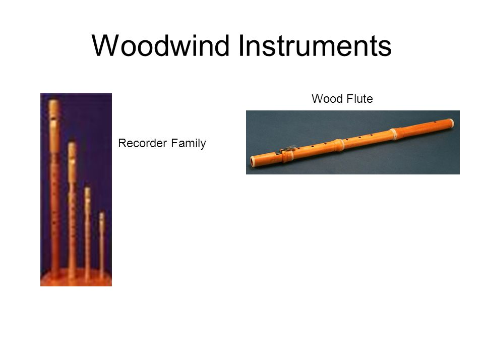 Woodwind Instruments Wood Flute Recorder Family