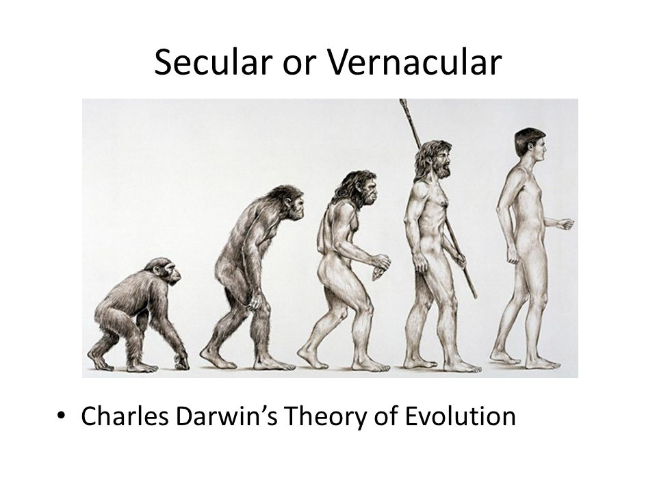 Secular or Vernacular Charles Darwin's Theory of Evolution
